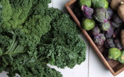 What you need to know about kale, weight loss, ​and misconceptions…